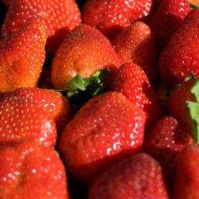Căpșuni – dulcele roșu