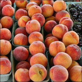 Piersicile și nectarinele – gusturi răcoritoare de vară
