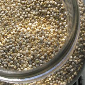Quinoa cu prune (de la 8 luni)