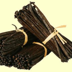 Vanilia, o sursă de vitamine și minerale pentru cei mici