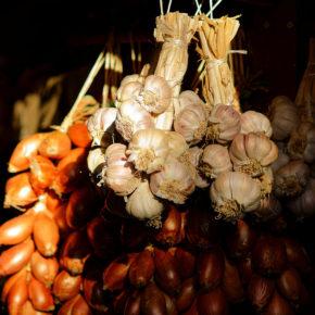 Usturoi, un condiment-medicament de care și copiii se pot bucura