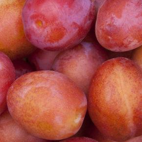 Prune, o sursă importantă de antioxidanți și fibre