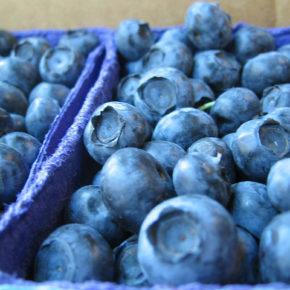 Afine sau antioxidanți la puterea a treia