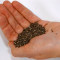 Semințe de chia, un miracol al naturii