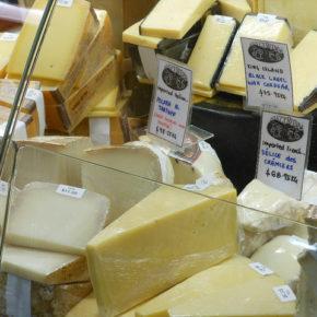Ce brânză putem oferi copiilor?