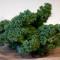 Varză Kale, leguma necunoscută bogată în substanțe nutritive