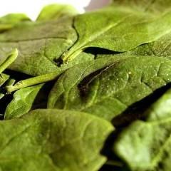 7 lucruri interesante despre spanac
