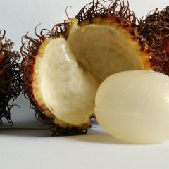 Rambutan, ruda mai puțin cunoscută a litchiilor