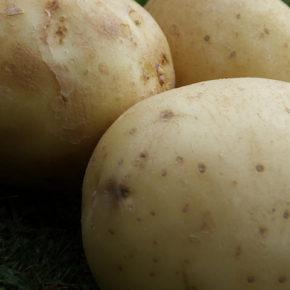 Ce să faci doar cu un cartof?