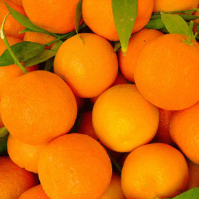 9 lucruri interesante despre portocale