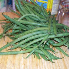 Salată de fasole verde (de la 1 an)