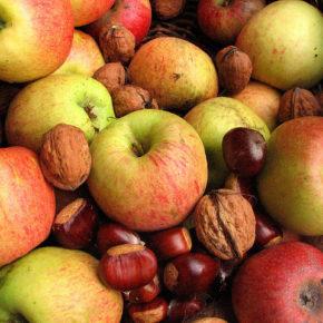 Alimente de toamnă pentru întărirea imunității
