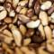 Nuci de Brazilia sau semințele deghizate