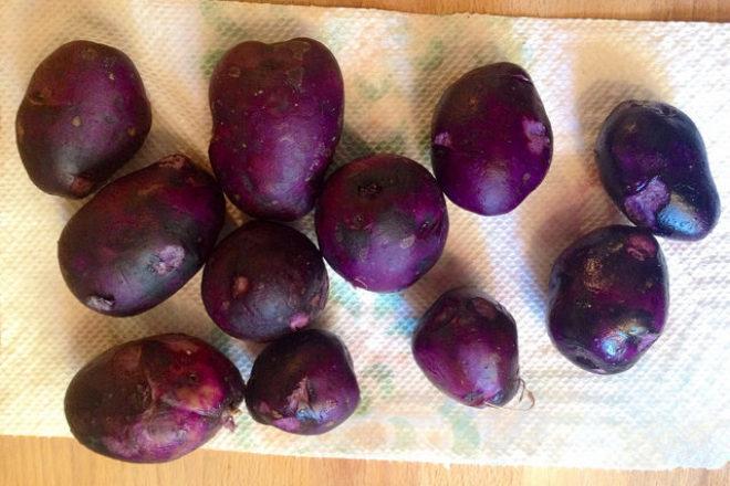 salată din cartofi violet