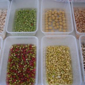 3 metode pentru pregătirea leguminoaselor