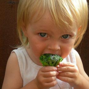 Cum ajutăm copilul să devină fan legume?