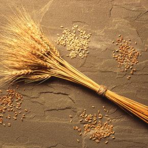 Top 5 reţete cu cereale