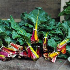 8 legume cu frunze verzi, esențiale pentru o sănătate optimă