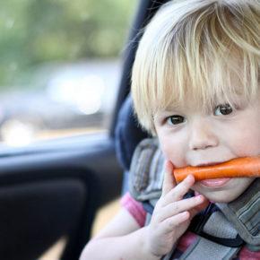 alimentație sănătoasă la drum lung