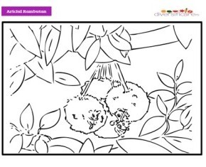 Ariciul Rambutan de colorat
