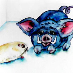 Porcul şi porcuşorul de Guineea