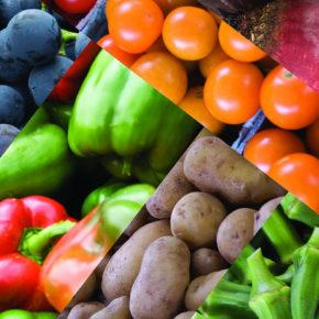 Surse de bioflavonoide sau vitamina P