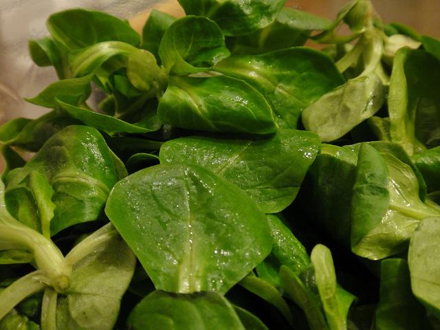 salată de câmp
