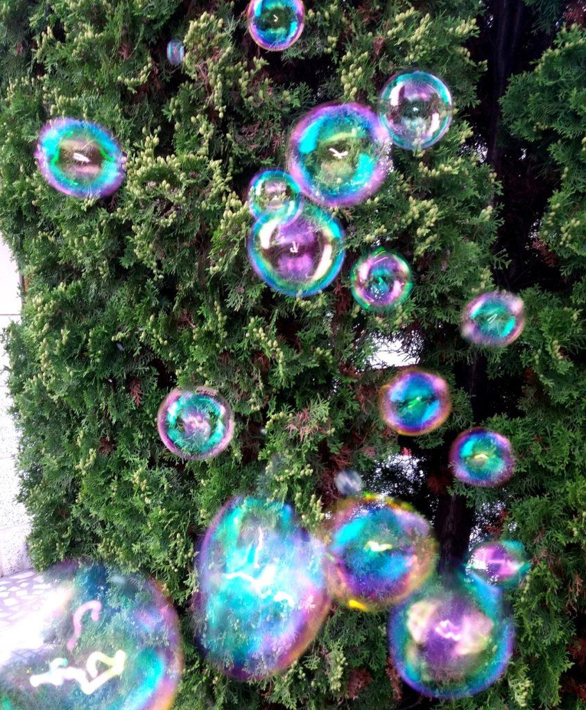 baloane de săpun