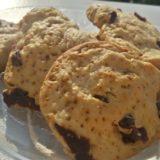 Biscuiţi de casă cu cocos şi merişoare (de la 1 an)