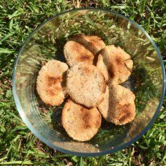 Biscuiți cu semințe și făină de cocos (fără gluten)