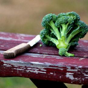 Broccoli – o poveste din categoria totul sau nimic