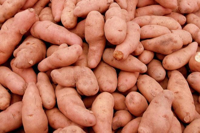 legume de iarnă cu cartofi